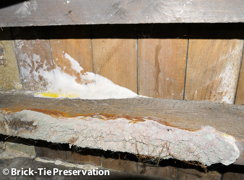 dry rot under a floor in Sheffield pre purchase survey
