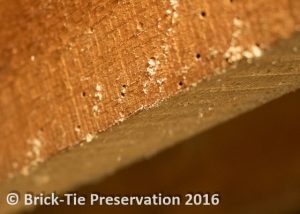 effective woodworm treatment (1 of 1)